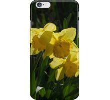 Sunny, Windy Spring Garden with Daffodils iPhone Case/Skin