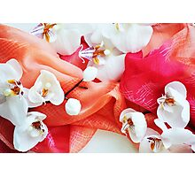 Orchids And Summer Sunsets Photographic Print