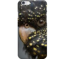 Rad Tail Black Cockatoo - Female iPhone Case/Skin