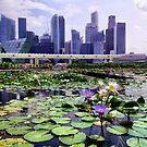 Just Another Beautiful Day In Singapore by ciaobella2u