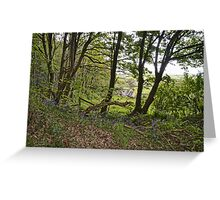 Perfect Location......... Greeting Card