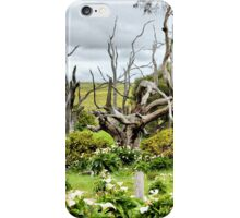 Patch of Lillies iPhone Case/Skin