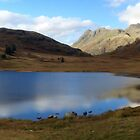 Blea Tarn in the Lake District, UK by GeorgeOne