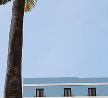 Blue Building with Palm Tree and Bird by Scott Larson