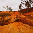 Pink Cliffs Heathcote VIC Australia by Margaret Morgan (Watkins)