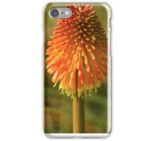 56 orange shroom iPhone Case/Skin