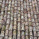 Roofing tiles by Arie Koene