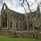 Tintern Abbey by RedHillDigital