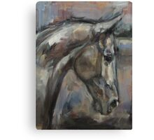 The Kind and Gentle Gelding Canvas Print