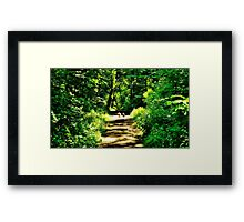 Good Companions Framed Print