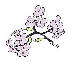 Blossoms by CamphuijsenArt