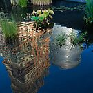 Beautiful Water Garden Reflecting New York Skyscrapers by Georgia Mizuleva