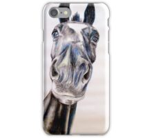 Hemelbesem iPhone Case/Skin