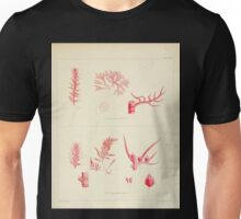 The botany of the Antarctic voyage of H M  discovery ships Erebus and Terror in the Years 1839 1843 Joseph Dalton Hooker V1 062 Unisex T-Shirt