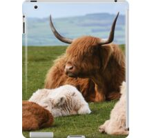 highland cows iPad Case/Skin