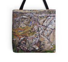 Climbing the rock Tote Bag