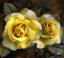 Daughters of Midas by RC deWinter