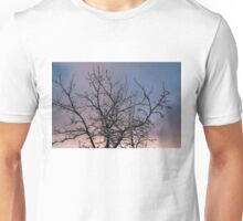 Ice Storm 2013 -  Icy Branches Sunset Unisex T-Shirt