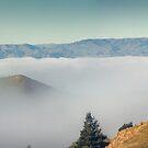 Midday Fog by Peter Kurdulija