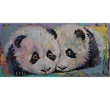Baby Pandas Photographic Print