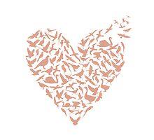 Heart Shaped Birds by lcondon