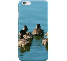 Flock of Blue Winged Teals Swimming iPhone Case/Skin