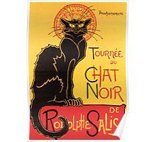 Le Chat Noir Vintage Poster Poster