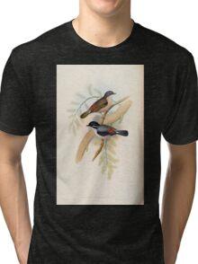 Birds of Asia John Gould 1883 V1 V7 090 Pteruthius Erythropterts Tri-blend T-Shirt