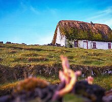 Thatched by Jason Castillo