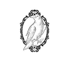 Quoth the Raven, Nevermore - White version Photographic Print