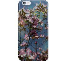 Skies iPhone Case/Skin