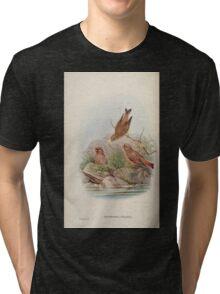 Birds of Asia John Gould 1883 V1 V7 331 Erythrospiza Githaginea Tri-blend T-Shirt