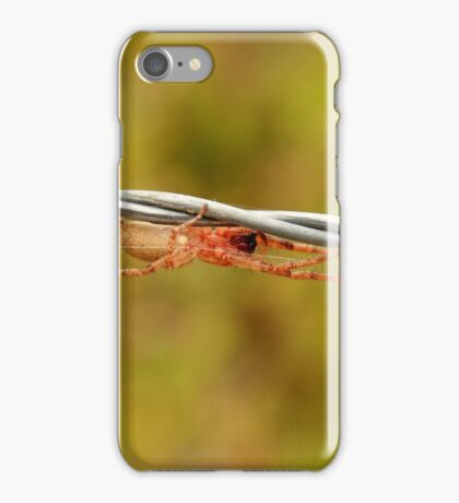 White Spider on Barbed Wire iPhone Case/Skin