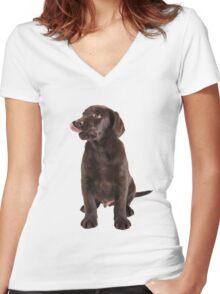 cute little brown labrador retriever puppy Women's Fitted V-Neck T-Shirt