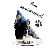 French Bulldog Birthday Photographic Print