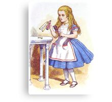 Alice and the Drink Canvas Print