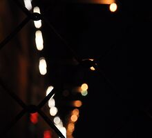 Bright lights, Big city by Shelly Bowersox