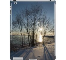 Long Shadows in the Snow iPad Case/Skin