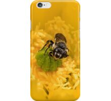 Rainy Day Cactus Flower Bee iPhone Case/Skin