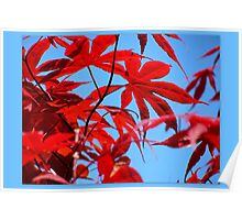 Electric Red Spring Poster
