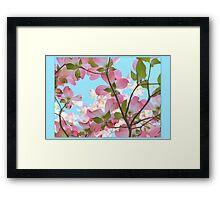 Springtime Pink Blossoms Framed Print