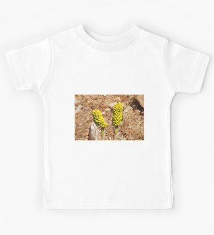 Dragon Lily seed heads, Greece Kids Tee