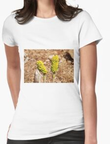 Dragon Lily seed heads, Greece Womens Fitted T-Shirt