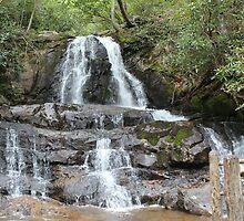 Upper Falls by Bob Hardy