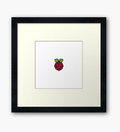 Raspberry Pi Framed Print
