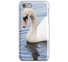 Mother Mute Swan and her Four Cygnets iPhone Case/Skin
