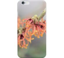 Plant Close-Up iPhone Case/Skin