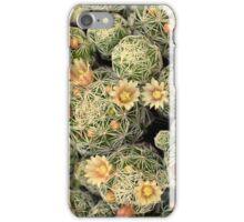 Pretty Prickly iPhone Case/Skin