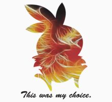 My Choice was Torchic by ArtichokesQueen