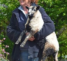 Mary Had A Little Lamb ........ by lynn carter